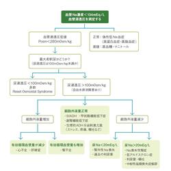 低Na血症の原因は?:Cadetto.jp