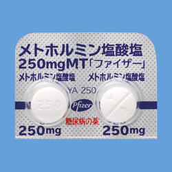 塩 メトホルミン 塩酸